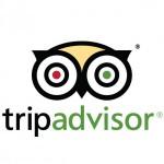Tripadvisorの口コミ・レビュー増加サービス(お試し版)