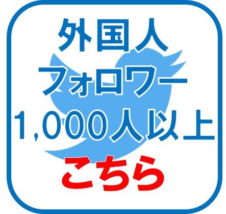 twi-1000