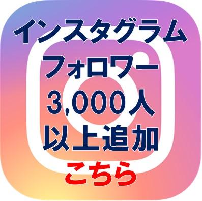 insta-3000